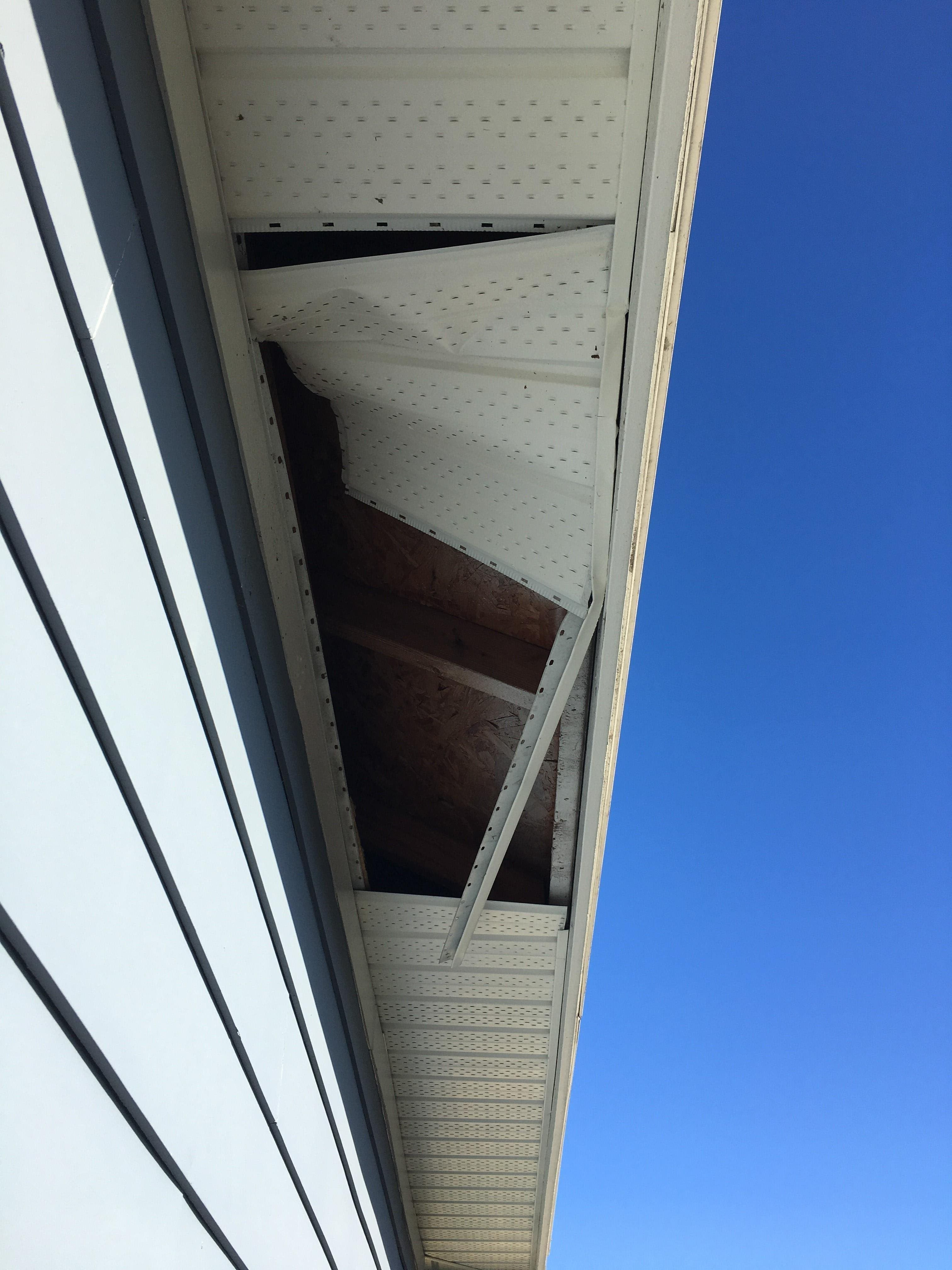 image of Raccoon Damage to Soffit