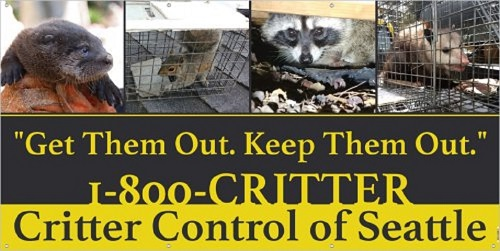 Get Them Out. Keep Them Out. Call 1-800-CRITTER