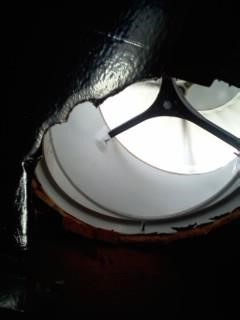 image of animal entry through roof turbine