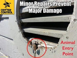 minor repairs prevent major damage