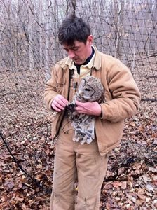 owl rescued from tangled soccer net